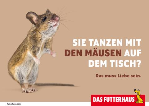 Sie tanzen mit den Mäusen auf dem Tisch?