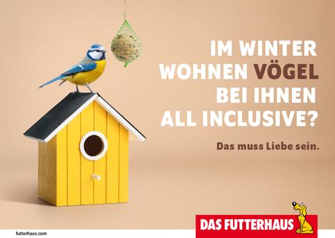 Im Winter wohnen Vögel bei Ihnen All-Inclusive?
