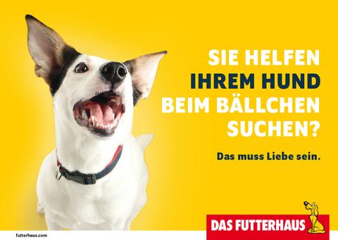 Sie helfen Ihrem Hund beim Bällchen suchen?