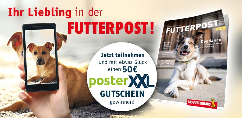 Futterpost - Schnappschuss