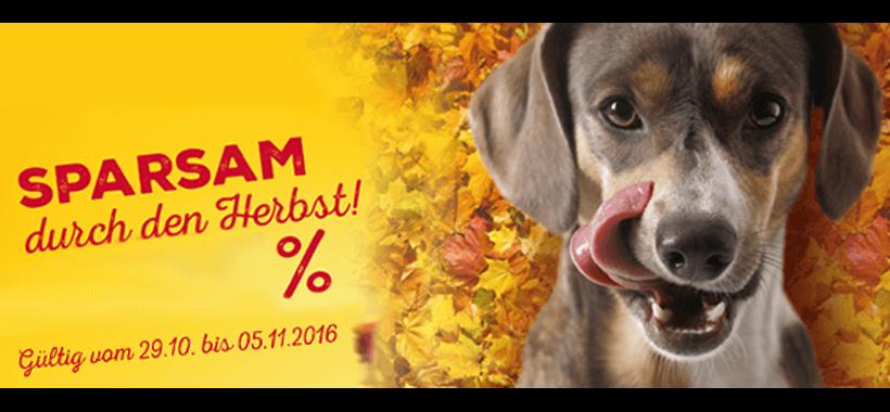 Werbung Herbst
