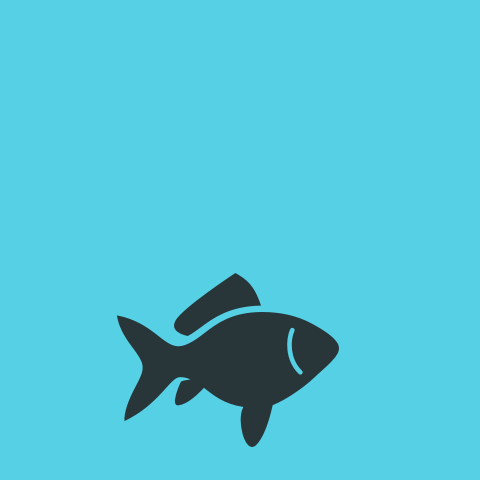 Aquaristik Abteilung DASFUTTERHAUS