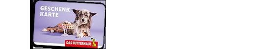 Schnappschuss Gewinnspiel - Gutschein