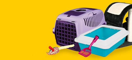 Grundausstattung für Ihre Katze