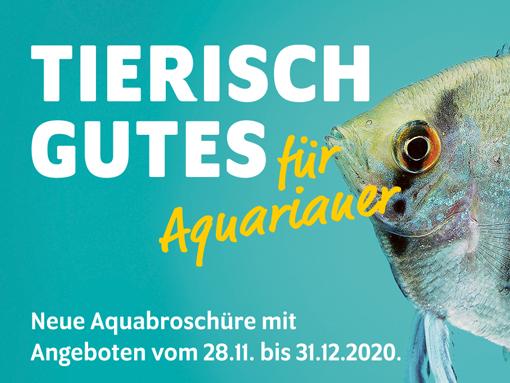 aqua_broschuere