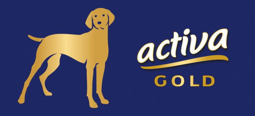 activa Gold Hund bei Das Futterhaus