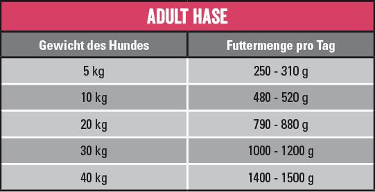 Wildkind Hase